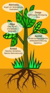 Umgang mit Konflikten - Klesha-Baum